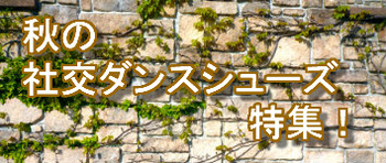 20170810シューズ.jpg