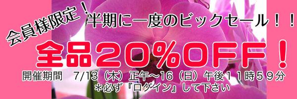 【社交ダンス衣装 アルル】会員様限定!全品20%OFFセール!!