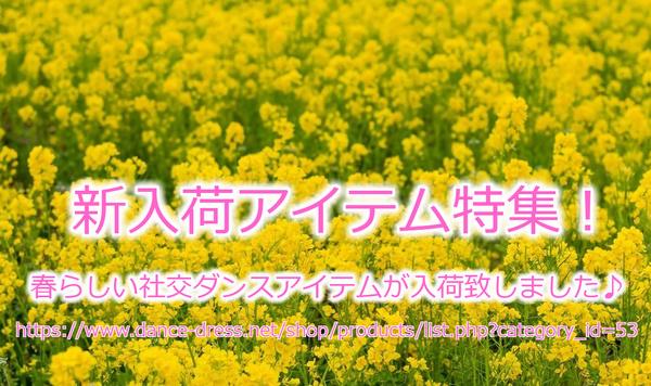 春の新入荷アイテム!